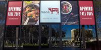 vaca_window-graphics_fb